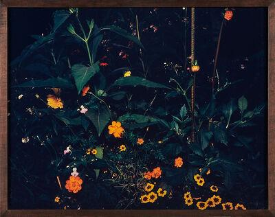 Miranda Lichtenstein, 'Flowerbed', 2002