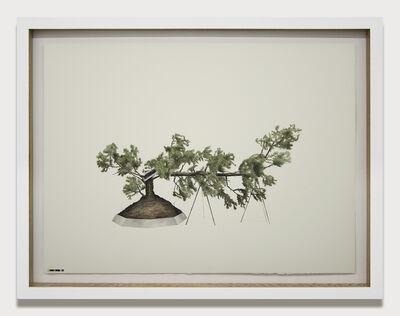 Edwin Monsalve, 'Prototipos para una naturaleza rehabilitada', 2014