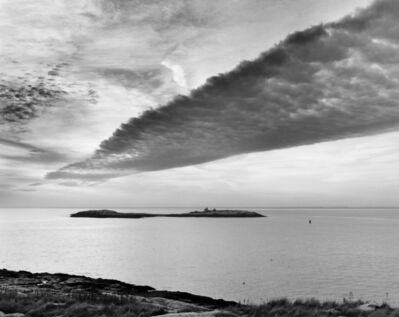 Alexandra de Steiguer, 'It Flew Over Lunging Island'