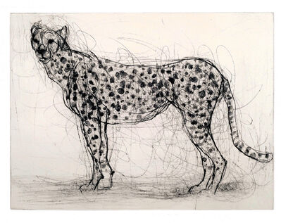 Susan Siegel, 'Cheetah', 2018