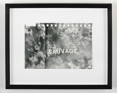 Betty Tompkins, 'Sauvage', 2016