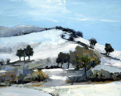 Simon Andrew, 'Trees on Hillside ', 2016