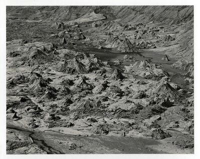 Emmet Gowin, 'Bear Cove, Spirit Lake, Mount St. Helens', 1980