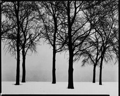 Harry Callahan, 'Chicago', 1950
