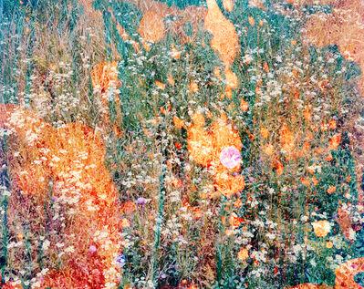 Tealia Ellis Ritter, 'Reenactment 73 (Green Throw)', 2013