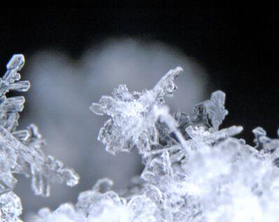 Yutaka Sone, 'Micro Snowflake Photograph from Yutaka Snow Studio', 2005