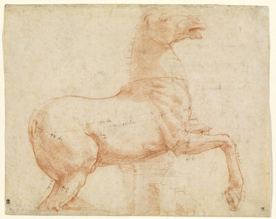Raphael, 'A Marble Horse on the Quirinal Hill [recto]', ca. 1513