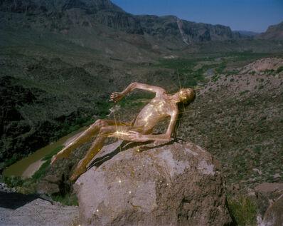 Synchrodogs, 'Untitled', 2013