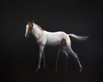 TM Davy, 'horse(xx)', 2017