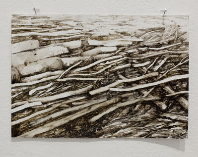 Johanna Karlsson, 'Lumber II', 2014