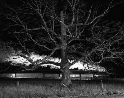 O. Winston Link, 'NW1643 Giant Oak, Max Meadows, VA', December 31 1957