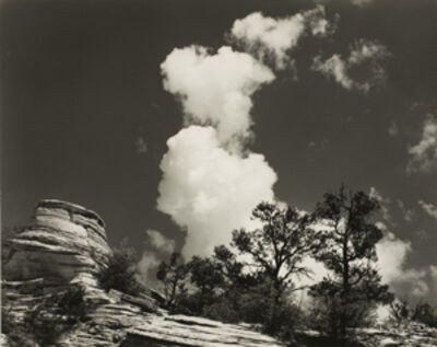 Minor White, 'Zion National Park, Utah', 1960