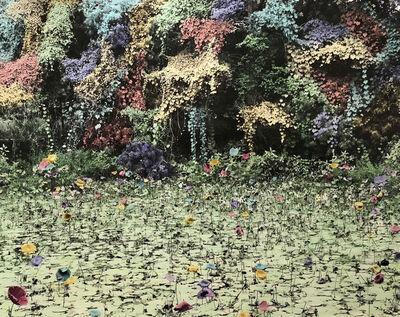Vasantha Yogananthan, 'The Pond', 2017