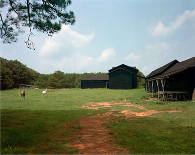 William Christenberry, 'Horses and Black Buildings, Newbern, Alabama', 1978