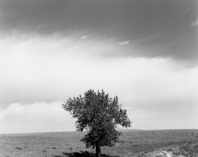 Robert Adams, 'Pawnee National Grasslands, Colorado', 1984