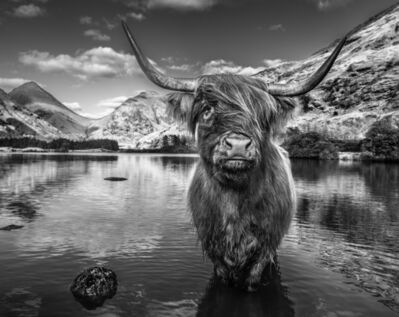 David Yarrow, 'Glen Etive', 2019