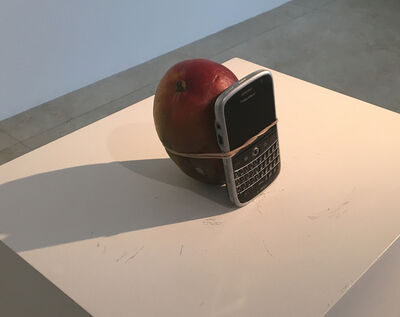 Wilfredo Prieto, 'Look at the Size of this Mango ', 2011