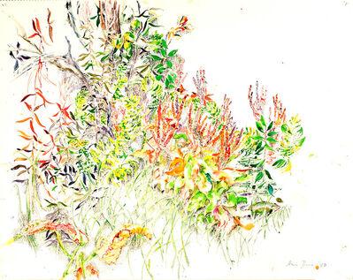Anne Dunn, 'Vegetation New Brunswick I', 1980