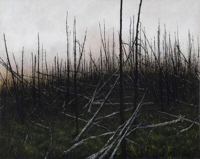 Lisa Lebofsky, 'Prescribed Burn', 2020