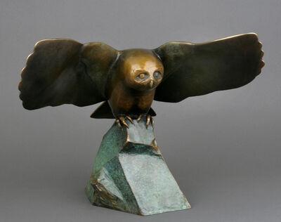 Georgia Gerber, 'Settling Owl', 2013