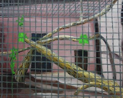 HUANG HAI-HSIN, 'Chlorocebus Sabaeus 綠猴', 2019