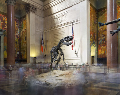 Matthew Pillsbury, 'Dinosaur, American Museum of Natural History', 2015