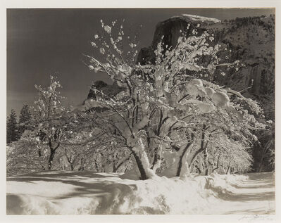 Ansel Adams, 'Half Dome, Orchard, Winter, Yosemite National Park', c. 1930