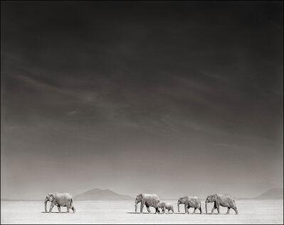 Nick Brandt, ''Elephants On Bleached Lake Bed' Amboseli', 2008