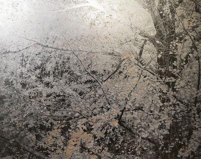 Masayoshi Nojo, 'Mirage#43', 2019
