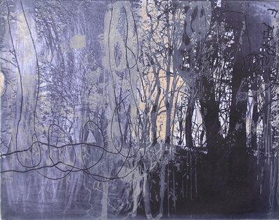 Ken Denning, 'Forêt IV', 2007