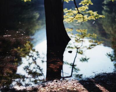 Risaku Suzuki, 'Water Mirror 15, WM-193', 2015
