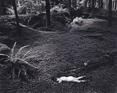 Wynn Bullock, 'Child in the Forest', 1951-printed circa 1970