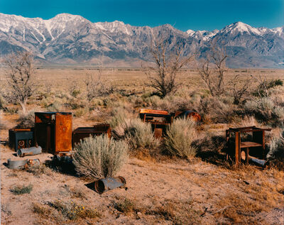 Laura McPhee, 'Apple Orchard, Manzanar Japanese-American Relocation Camp, Owens Valley, California, 1995, from the series No Ordinary Land', 1995