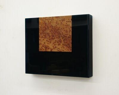 Harald Schmitz-Schmelzer, 'Vavona Burl', 2015
