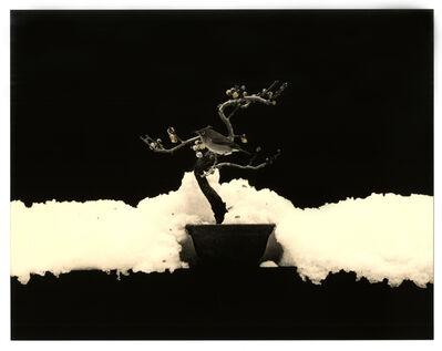Yamamoto Masao, 'Kawa = Flow #1675', 2016
