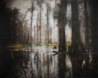 John Folsom, 'Maurepas Swamp III', 2018