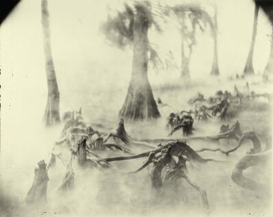 Sally Mann, 'Deep South, Untitled (Swamp Bones)', 1998