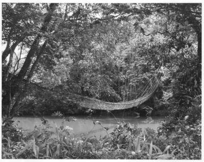 Hector Acebes, 'Vine Bridge, Guinea', 1953