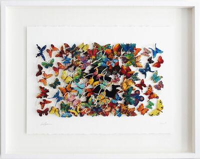 David Gerstein, 'Beauty Hunter - Paper Cut', 2007