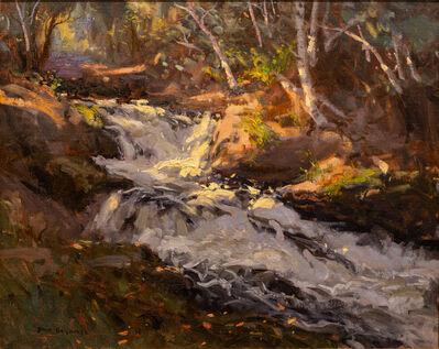 Steve Gerhartz, 'Sunlit Waterfall', 2016