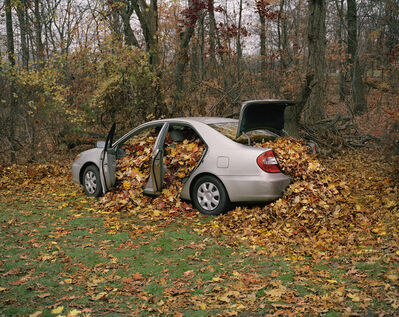 Neil Goldberg, 'My Father's Camry Filled with Leaves', 2009