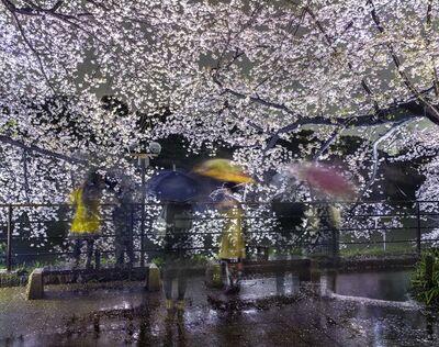 Matthew Pillsbury, 'Hanami #16, Chidorigafuchi, Thursday, April 3rd, 2014', 2014