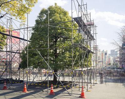 Matthew Pillsbury, 'First Hanami, Ueno Park, Tokyo (TV14599)', 2014