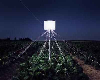 Caleb Charland, 'Beet Field, LaJole Growers LLC, Van Buren, Maine ', 2013
