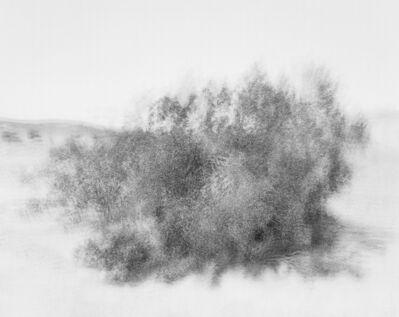 CJ Heyliger, 'Wind', 2014