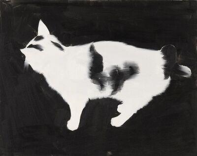 Rafał Bujnowski, 'Cat 1', 2004