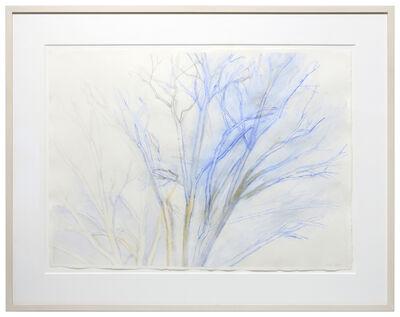 Sylvia Plimack Mangold, 'The Pin Oak 4/09', 2009
