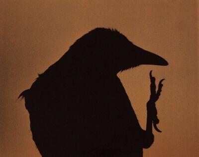 Masahisa Fukase, 'Untitled from Ravens', 1976-printed in 1984