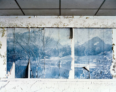 Tommy Kha, 'The Nothing Froest, Memphis TN', 2011