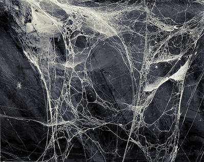 Joakim Eskildsen, 'The Spider', 1992
